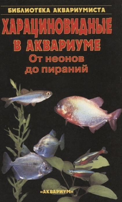 Харациновидные в аквариуме От неонов до пираний