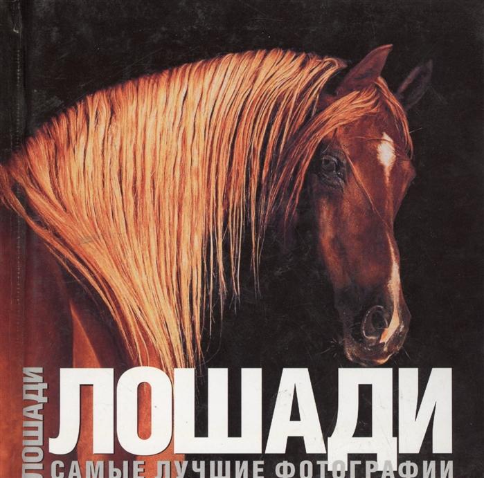 Лошади Самые лучшие фотографии бертолаччо а чудеса света самые лучшие фотографии