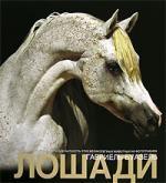Альбом Лошади