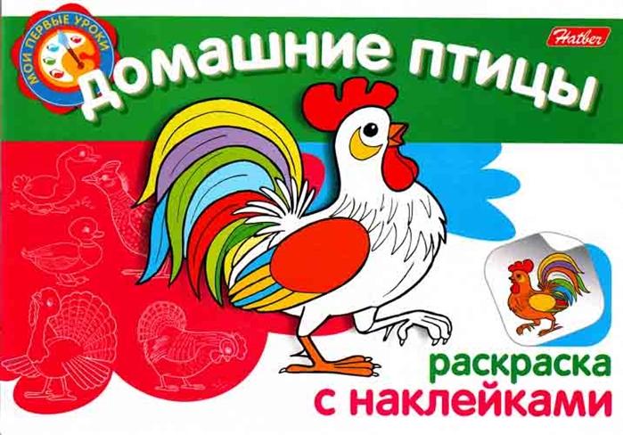 КР Домашние птицы кр птицы