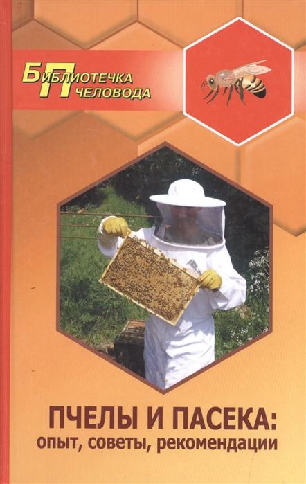 Пчелы и пасека опыт советы рекомендации