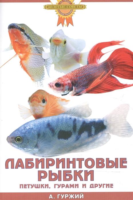 цены Гуржий А. Лабиринтовые рыбки Петушки гурами и др