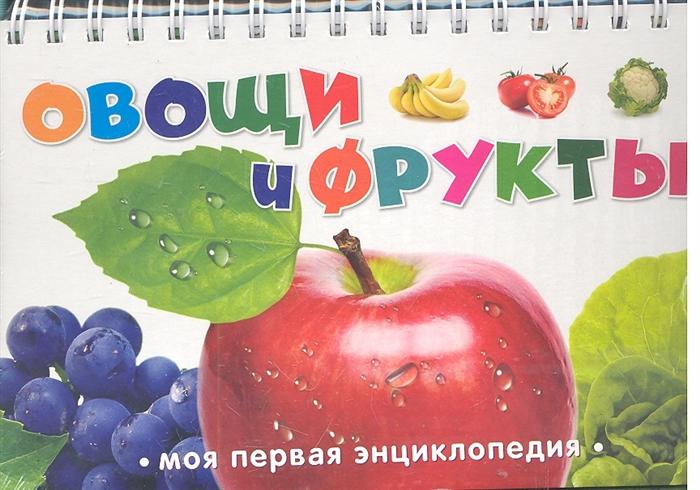 Жилинская А. (ред.) Овощи и фрукты жилинская а ред большая азбука