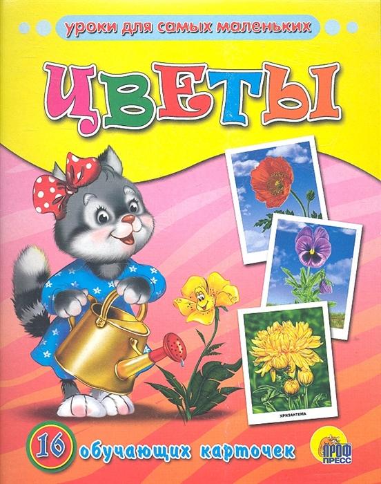 Цветы 16 обучающих карточек