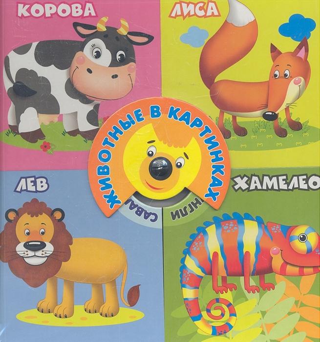 Русакова Е. (ред.) Животные в картинках русакова е ред тетрадь с прописями пишем по контуру