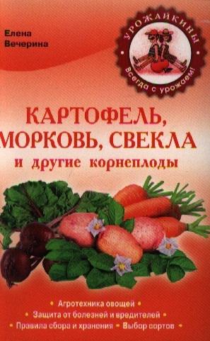 Картофель морковь свекла и другие корнеплоды
