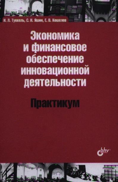 Туккель И., Яшин С., Кошелев Е. Экономика и финансовое обеспечение инновационной деятельности Практикум недорого