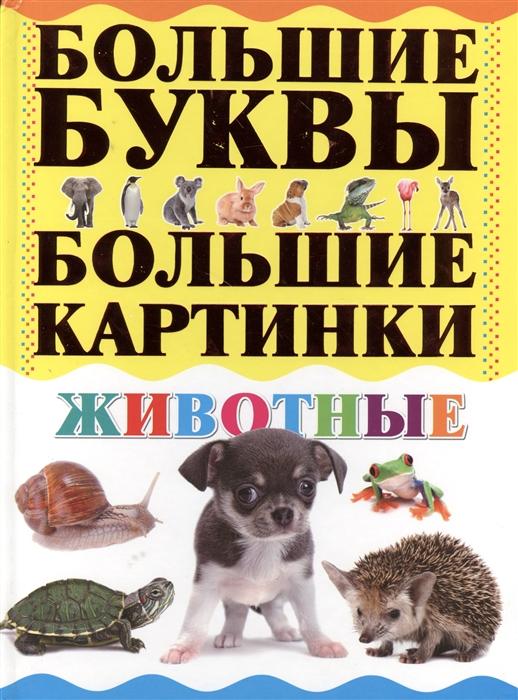 Фото - Резько И. Животные резько и ред знаки и символы резько и аст