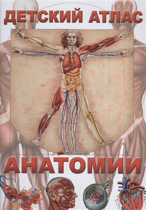 Фото - Гуиди В. Детский атлас анатомии детский
