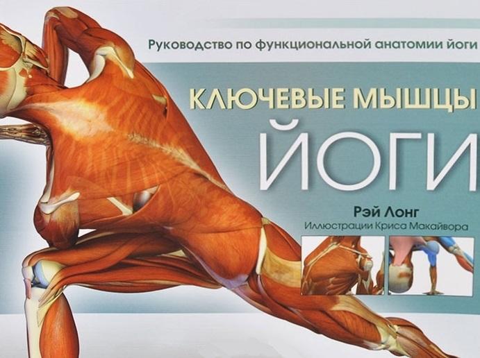 Лонг Р. Ключевые мышцы йоги Руководство по функциональной анатомии йоги лонг р ключевые позы йоги руководство по функциональной анатомии йоги