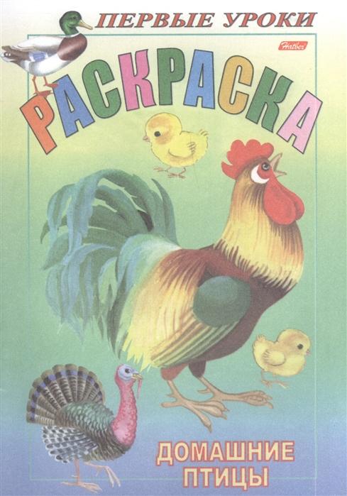 Купить Раскраска Домашние птицы, Хатбер-Пресс, Раскраски