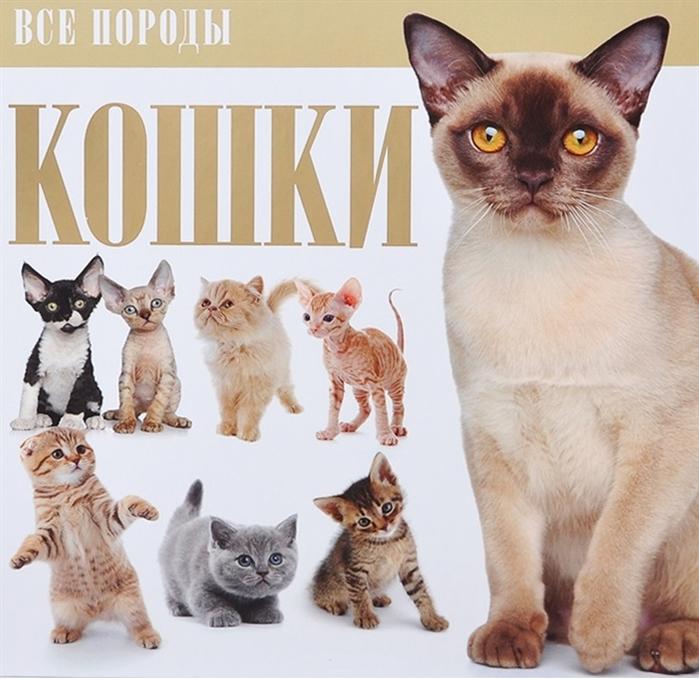 Фото - Резько И. Кошки резько и ред знаки и символы резько и аст
