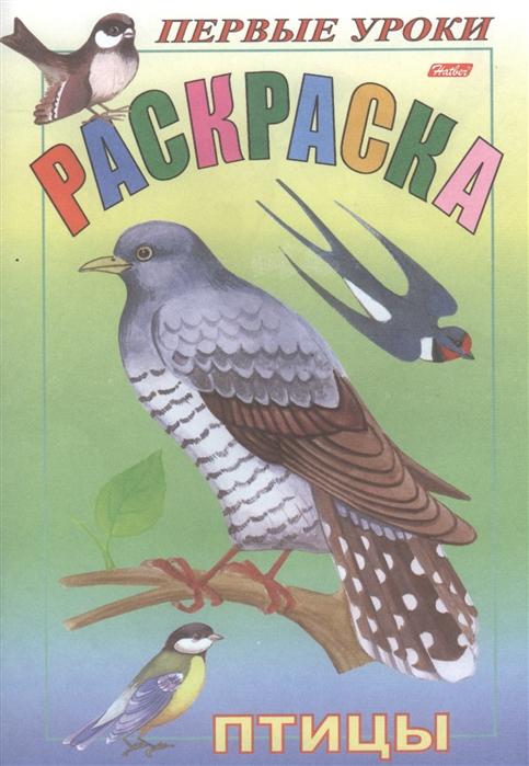 Купить Первые уроки Раскраска Птицы, Хатбер-Пресс, Раскраски