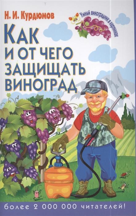 Курдюмов Н. Как и от чего защитить виноград н и курдюмов как помочь винограду не болеть