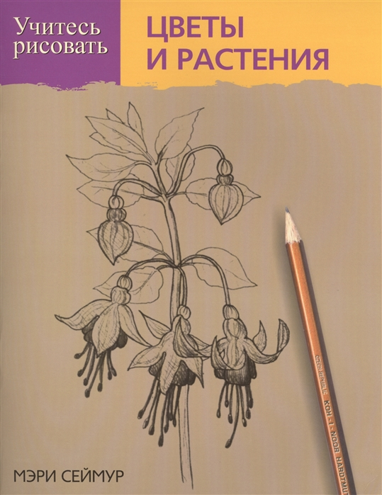 Сеймур М. Учитесь рисовать цветы и растения как рисовать цветы