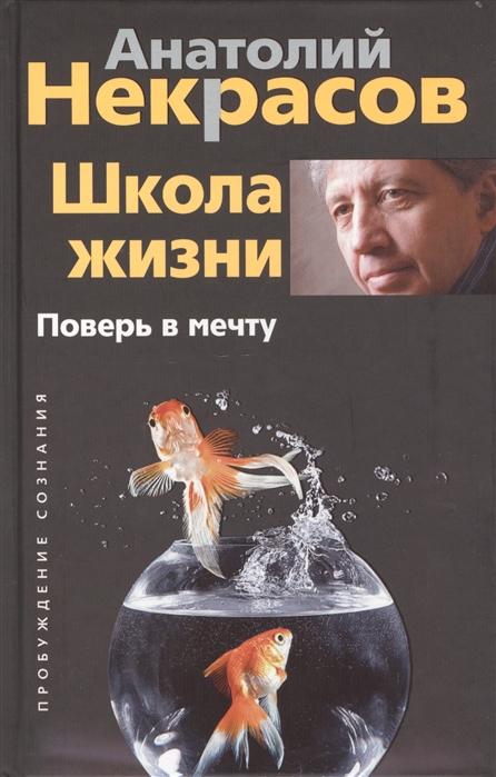 Некрасов А. Школа жизни Поверь в мечту