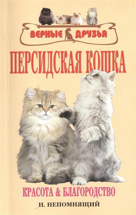 Персидская кошка Красота и благородство