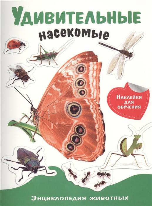 Купить Удивительные насекомые, Стрекоза, Книги с наклейками
