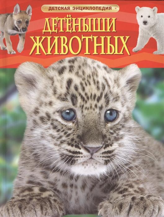 Несмеянова М. (ред.) Детеныши животных хочу знать детеныши животных