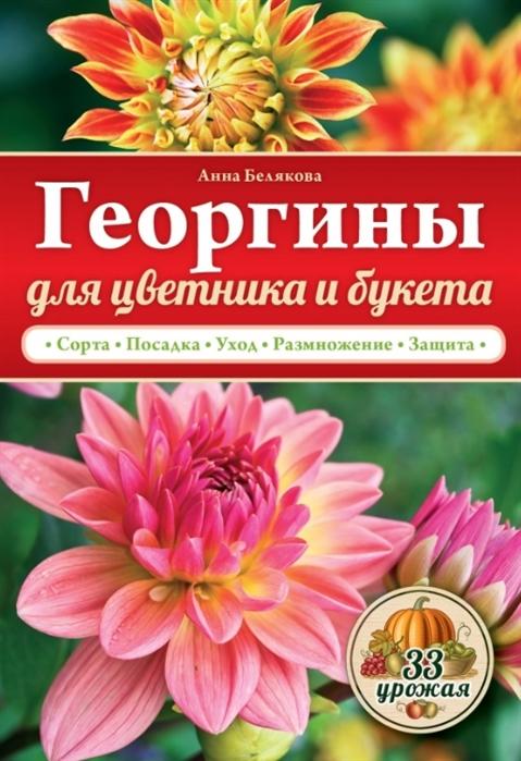 Георгины для цветника и букета