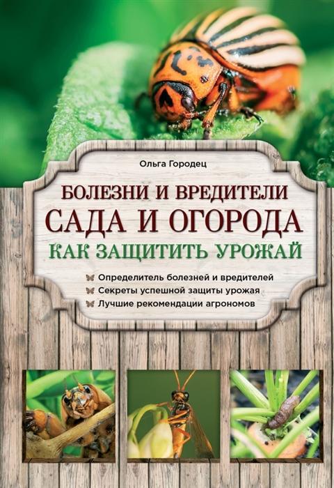 Болезни и вредители сада и огорода Как защитить урожай