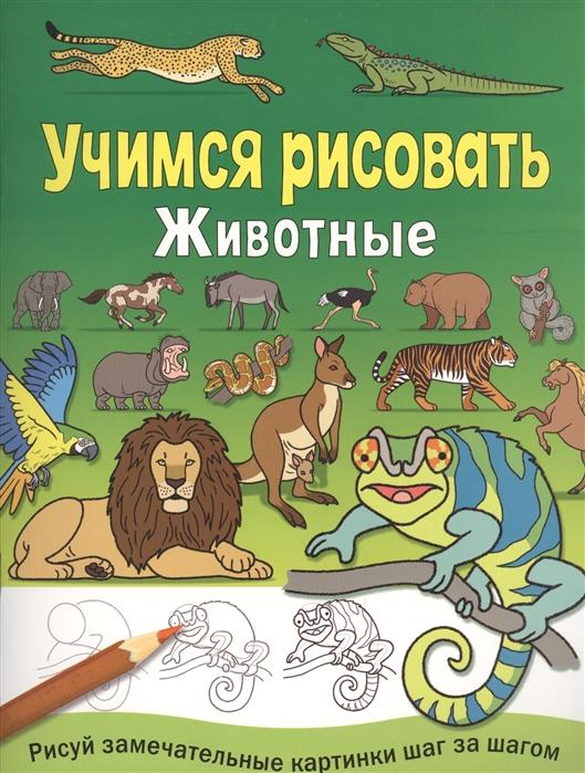Животные Учимся рисовать Рисуй замечательные картинки шаг за шагом