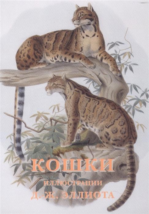 д д кошки о лягушках Эллиот Д.-Ж. (худ.) Кошки набор открыток