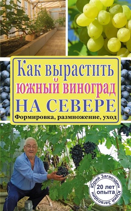Как вырастить южный виноград на севере Формировка размножение уход