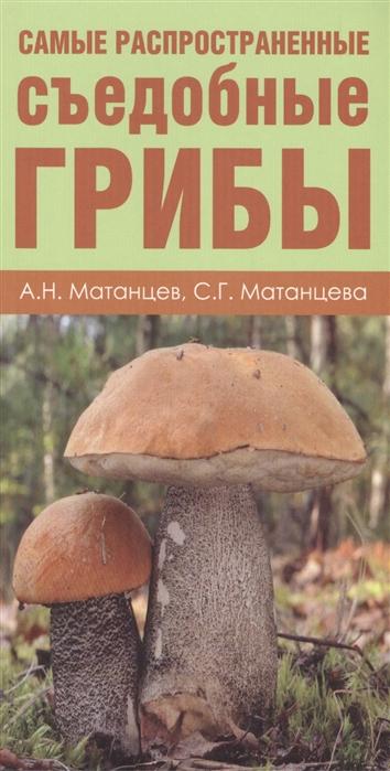 Грибы Карманный атлас-определитель Самые распространенные съедобные грибы