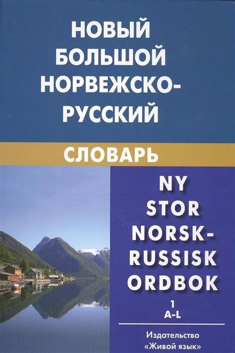 Новый большой норвежско-русский словарь комплект из 2 книг