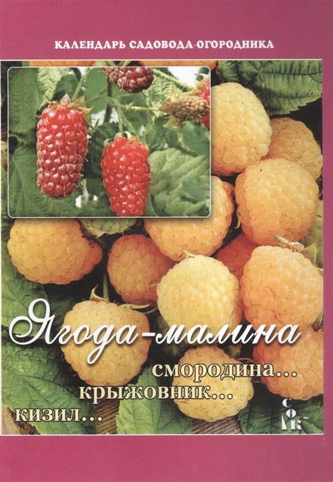 Мовсесян Л. Ягода-малина Смородина Крыжовник Кизил чудо ягода брусника морс 0 97 л