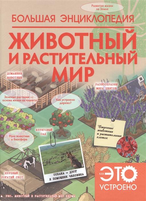 Купить Животный и растительный мир Большая энциклопедия, АСТ, Естественные науки