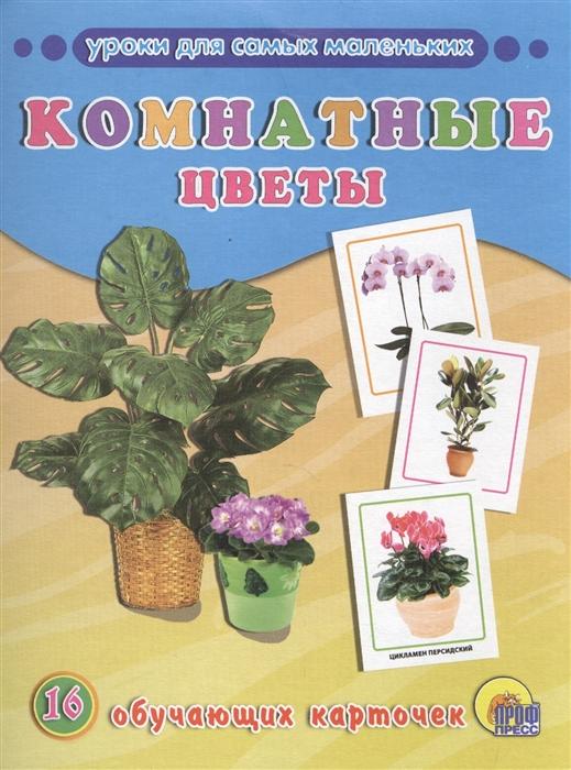 Комнатные цветы 16 обучающих карточек