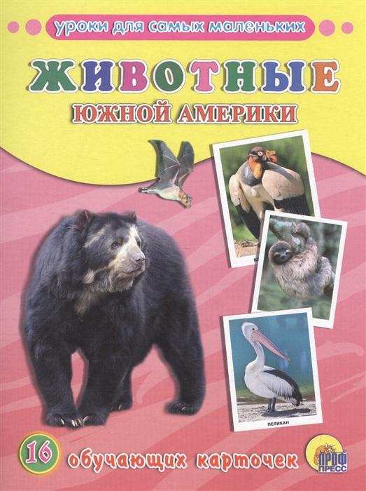 цена на Животные Южной Америки 16 обучающих карточек
