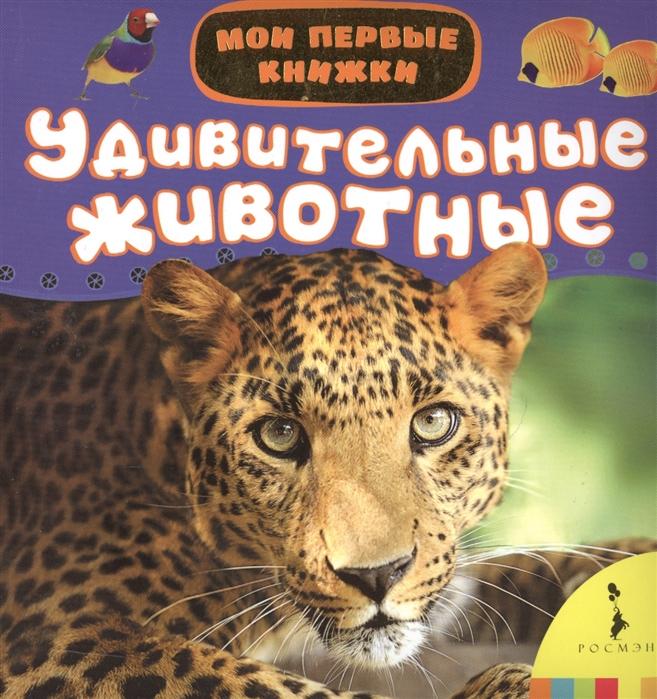 Кочеткова А. (ред.) Удивительные животные цены