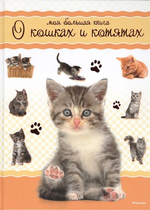Цыпилева Е. (ред.) Моя большая книга о кошках и котятах измайлова е ред моя большая книга игр мельница навстречу приключениям лестница лошадки от 2 до 6 игроков