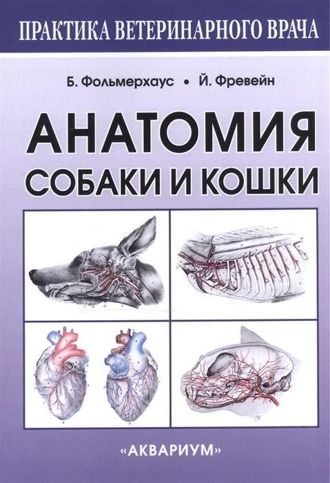 Фото - Фольмерхаус Б., Фревейн Й. Анатомия собаки и кошки крячко б битые собаки