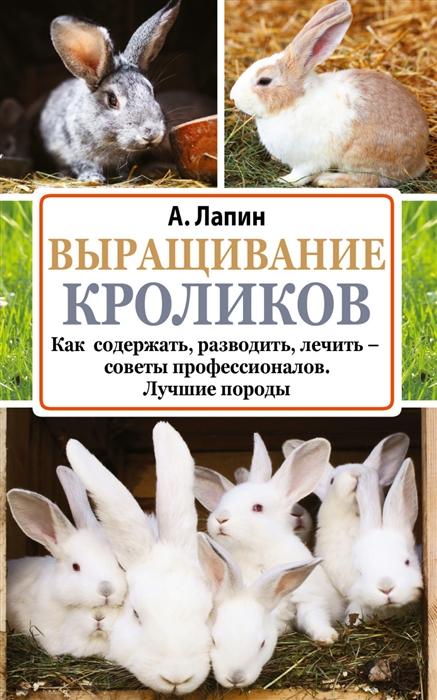 Лапин А. Выращивание кроликов Как содержать разводить лечить - советы профессионалов Лучшие породы лапин а выращивание кроликов содержание разведение лечение