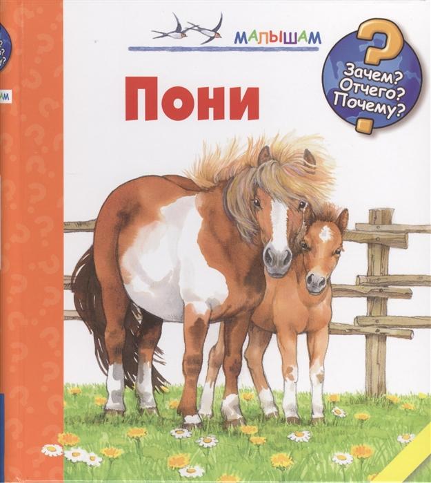 Росс Т. Пони