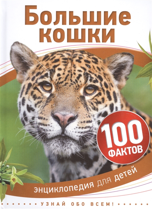 Бедуайер К. Большие кошки Энциклопедия для детей