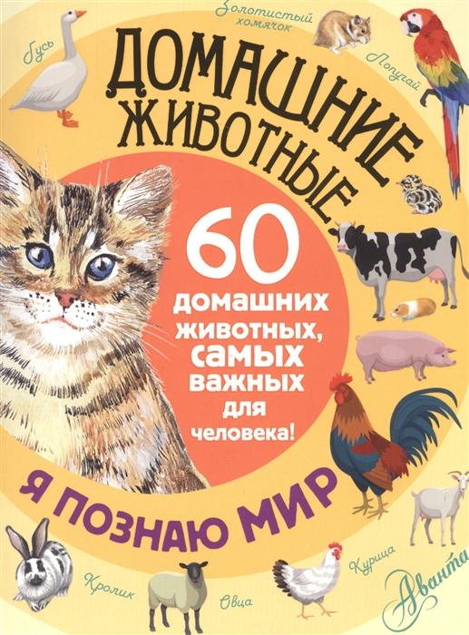 Снегирева Е. Домашние животные 60 домашних животных самых важных для человека е ю снегирёва домашние животные 60 домашних животных самых важных для человека