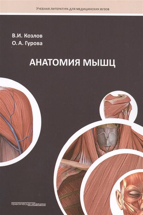 Козлов В., Гурова О. Анатомия мышц Учебное пособие недорого