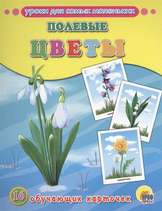 цена на Костина В. (ред.) Полевые цветы 16 обучающих карточек