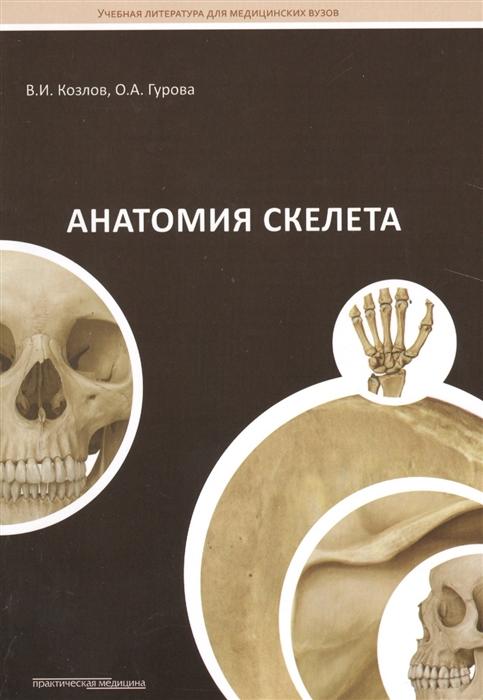 Козлов В., Гурова О. Анатомия скелета Учебное пособие недорого
