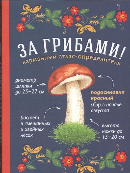 Ильина Т. За грибами Карманный атлас-определитель ильина татьяна александровна за грибами карманный атлас определитель
