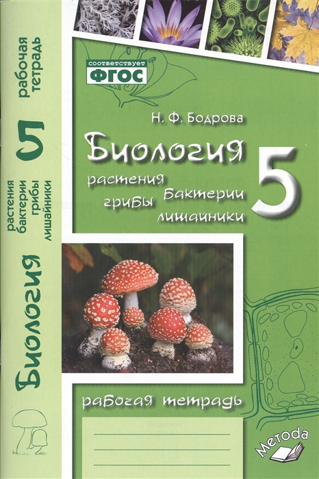 Бодрова Н. Биология 5 класс Растения Бактерии Грибы Лишайники Рабочая тетрадь к учебнику Д И Трайтака Н Д Трайтак цена