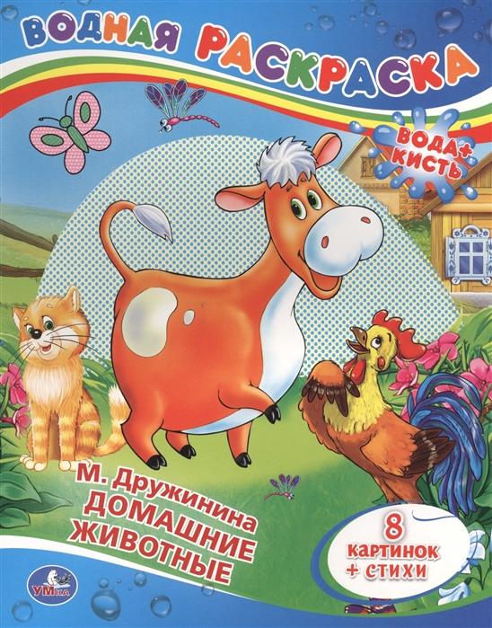 цены Дружинина М. Водная раскраска Домашние животные