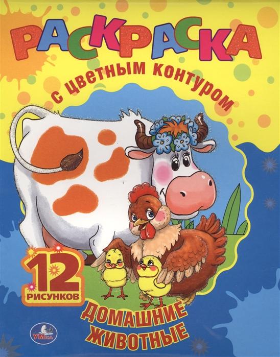 цена на Раскраска с цветным контуром Домашние животные