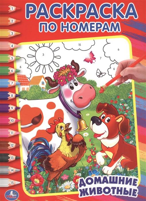Раскраска по номерам Домашние животные