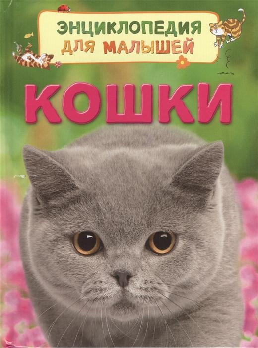 Купить Кошки, Росмэн, Естественные науки